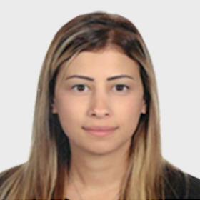 ec-undp-jft-lebanon-about-leap-nora-mourad